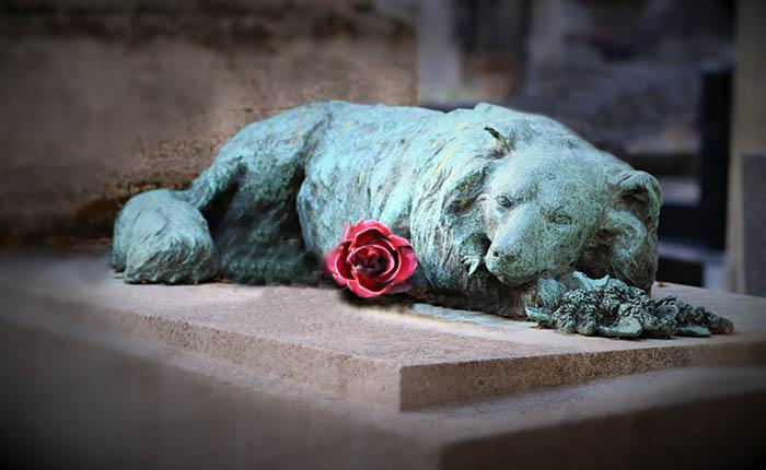Aandenken op graf van een hond.